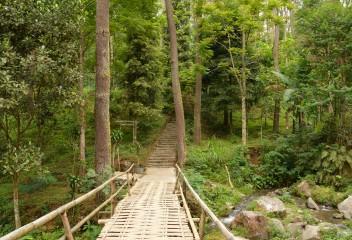 Mendaki di Tawangmangu